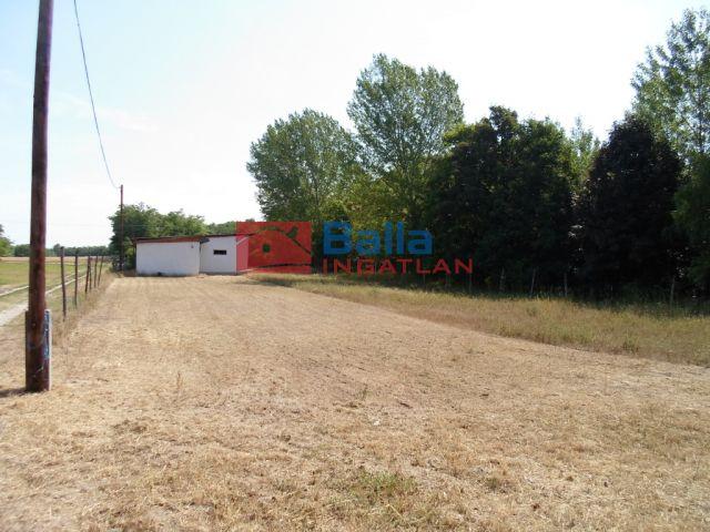 Bugyi - Alsóvány utca:  0 m²-es mezőgazdasági ingatlan   (35'000'000 ,- Ft)