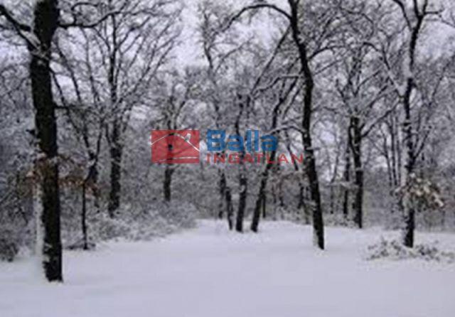 Diósjenő - Toldi Miklós utca környéke:  670 m²-es telek   (1'000'000 ,- Ft)