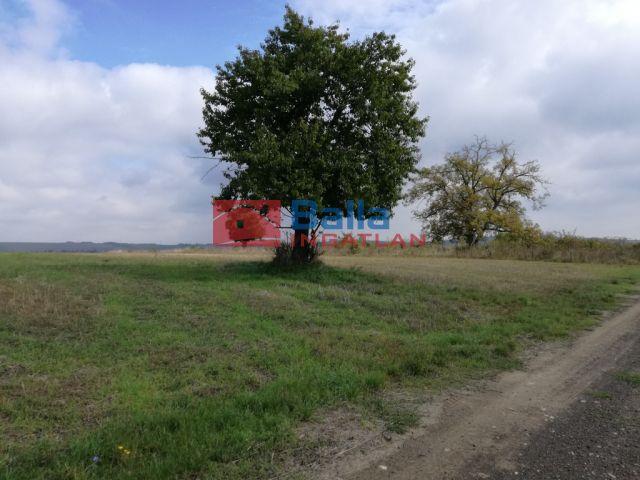 Erdőkürt - Erdőkürt:  1000 m²-es telek   (2'900'000 ,- Ft)