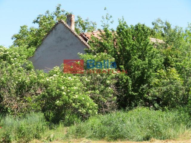 Siófok - Kiliti:  6556 m²-es telek   (31'400'000 ,- Ft)
