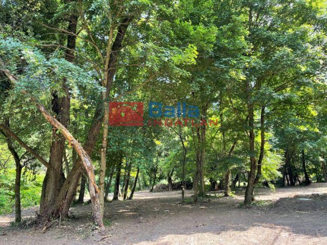 Szokolya - Szokolya:  719 m²-es telek   (16'200'000 ,- Ft)