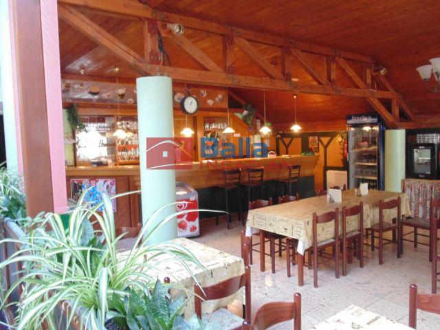 Agárd - Katica utca:  42 m²-es üdülő   (140'000 ,- Ft)