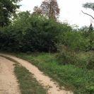 Eladó 1695 m²-es mezőgazdasági ingatlan X. Kerület (Felsőrákos), Mátyásföld-Pesti határ út: 800'000 Ft