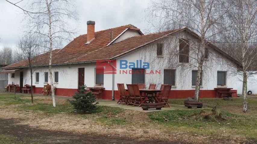 Kistelek - Kömpöci tanya:  0 m²-es mezőgazdasági ingatlan   (38'500'000 ,- Ft)