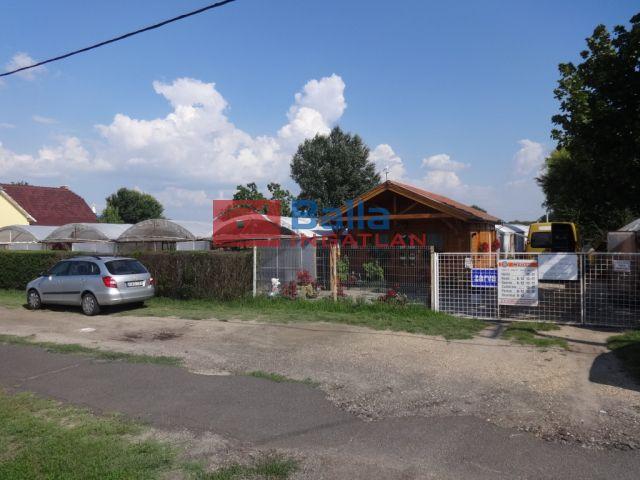 Tiszakécske - Tiszabög Kertészet utca:  0 m²-es mezőgazdasági ingatlan   (12'000'000 ,- Ft)