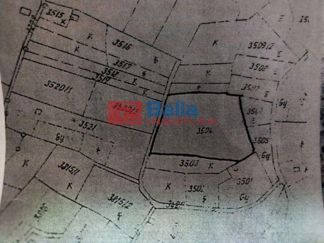 Lovasberény - Szőlőhegy utca:  2250 m²-es telek   (6'490'000 ,- Ft)
