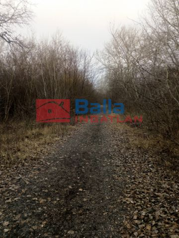 Szigetszentmiklós - Boglya utca:  1151 m²-es telek   (17'265'000 ,- Ft)