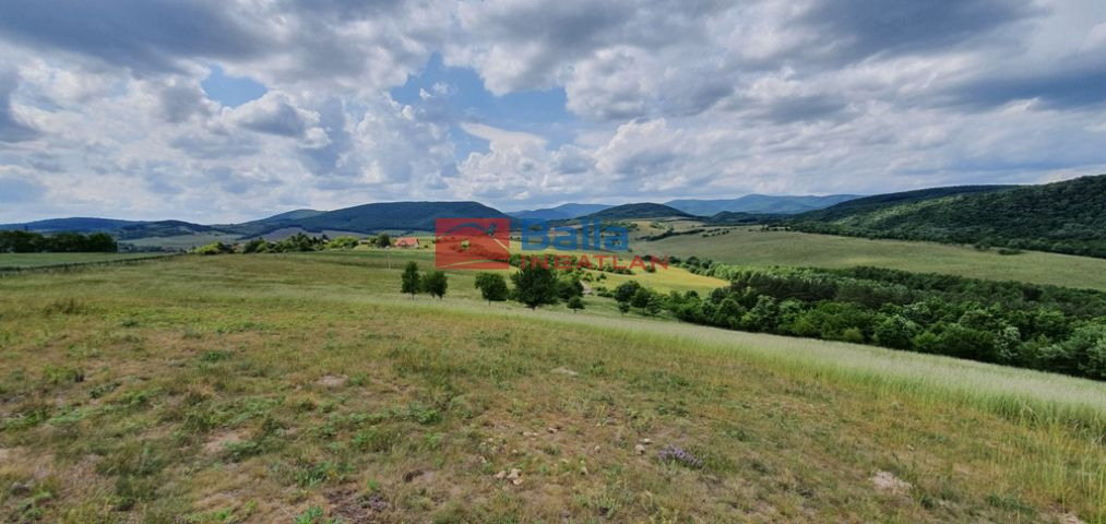 Szokolya - Sólyomvölgy:  294000 m²-es telek   (350'000'000 ,- Ft)