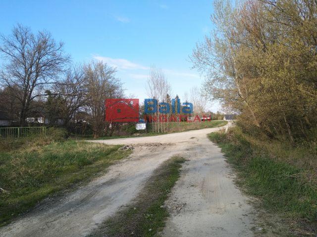 Tass - Tassi üdülőövezetben nyaralónak is alkalmas erdő Dunapart közeli!:  9550 m²-es telek   (9'990'000 ,- Ft)