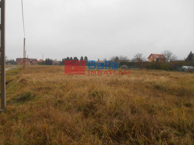 Zalacsány - Zrínyi Miklós útról nyíló utca:  9110 m²-es telek   (16'900'000 ,- Ft)